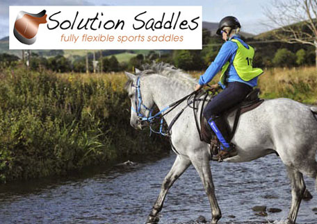 Solution Saddles